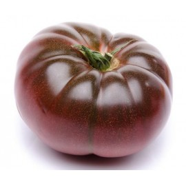 بذر گوجه بنفش درشت