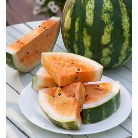 بذر هندوانه نارنجی