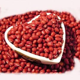 بذر ماش قرمز هیمالیا