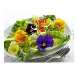 بذر بنفشه رنگارنگ سالادی خوراکی