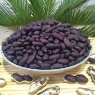 بذر بادام زمینی سیاه ژاپنی نایاب
