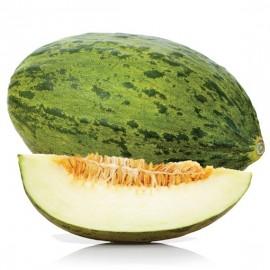 بذر خربزه سانتا کلوس Santa Claus Melon