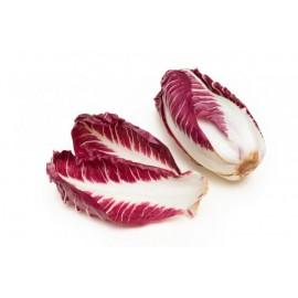 بذر چیکوری قرمز (Red Chicory)