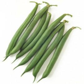 بذر لوبیا استانبولی