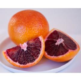 نهال پرتقال تامسون خونی