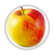 نهال سیب دو رنگ فرانسه - Braeburn Apple