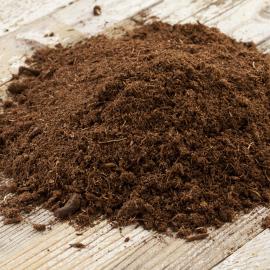 خاک مخصوص بلوبری