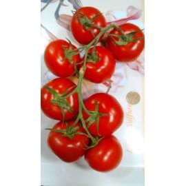 بذر گوجه فرنگی خوشه ای فلوریدا