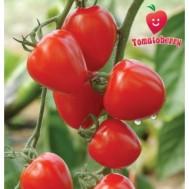 بذر گوجه توت فرنگی