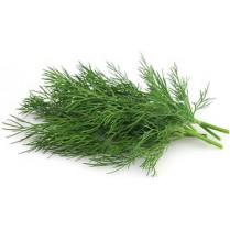 بذر شوید 10 گرمی