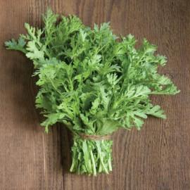بذر سبزی شانجیکو معطر