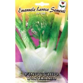 بذر رازیانه ایتالیایی