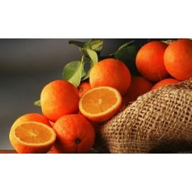 نهال نارنج درشت