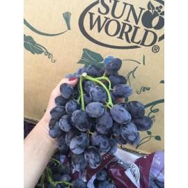بذر انگور فرانسوی
