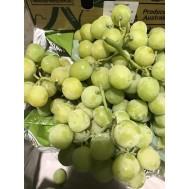 بذر انگور گرینلند
