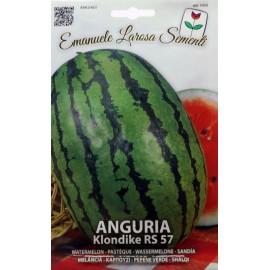 بذر هندوانه RS ایتالیا