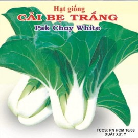 بذر باک چوی سفید