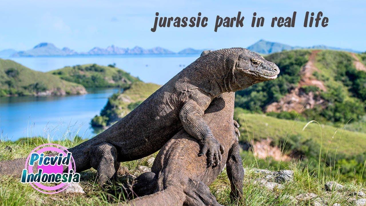 ساخت پارک ژوراسیک در اندونزی