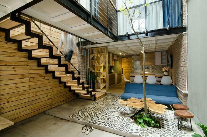 اخبار : تزیین خانه با کاشت درخت کارامبولا